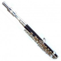 Prelude Piccolo PC710D
