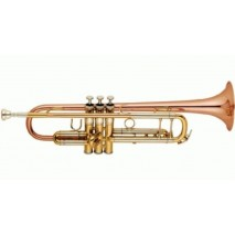 Garry Paul GP-6418QSN trombita