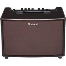Roland AC 60 RW akusztikus kombó