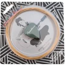 Pasadena PSA1047 akusztikus gitár húrkészlet