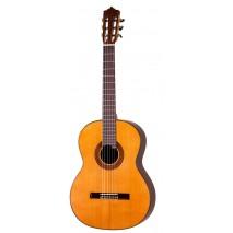 Martinez MCG-88 C Senorita klasszikus gitár