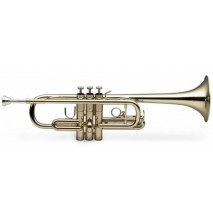Stagg WS-TR255S trombita