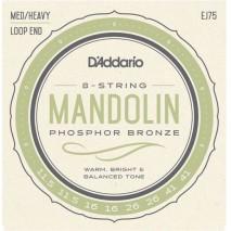 D'Addario EJ75 Mandolin húr