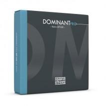 Thomastik-Infeld hegedű húr E Dominant Pro DO01