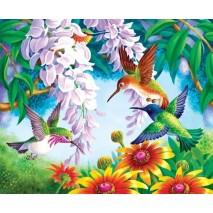 Kolibri számfestő készlet 40X50 cm