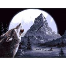 Festés számok szerint 40 x 50 cm Farkas