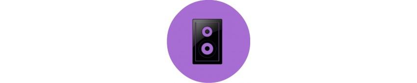 Oldalfali 100V hangszóró